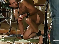 Near her boyfriend licks shlong