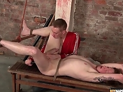 Fingers together with dildo up the ass of romp bottom