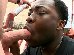 Magic mouth and attended anal of funereal gay banged by white dick