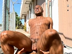 White chap sucks lowering dick added to then copulates lowering anal hole